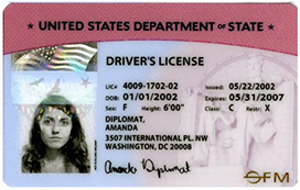 Alternative ids for nsf access nsf national science for Fl dept of motor vehicles license check