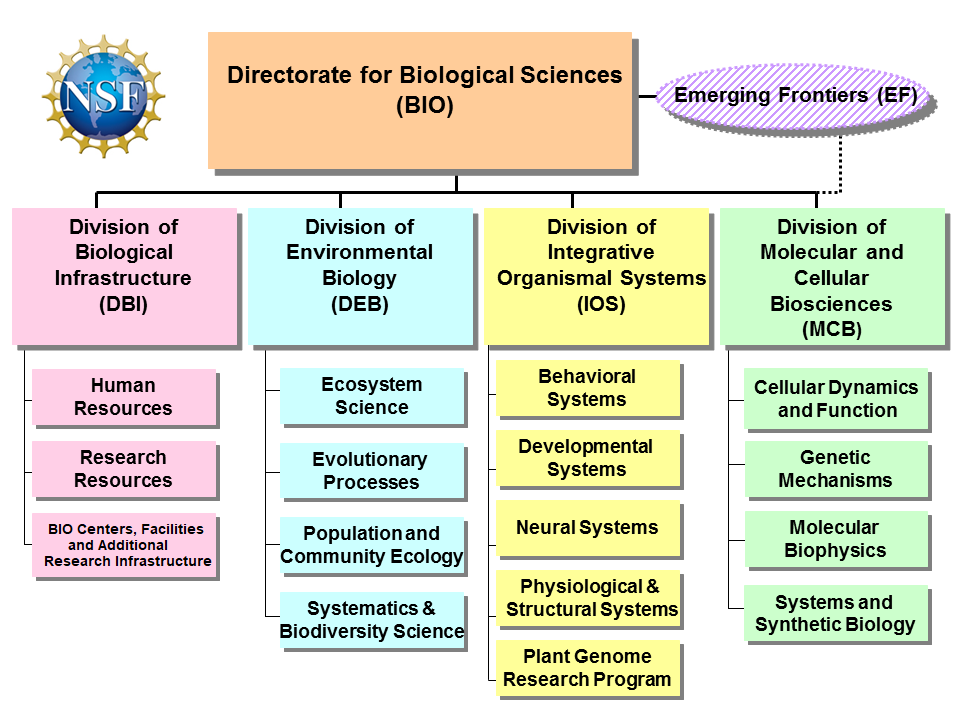 Us Nsf Bio About Biological Sciences Bio