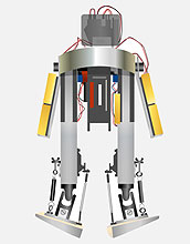 Massachusetts Institute of Technology Bipedal Walking Robot