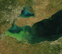 Satellite view of a widespread algae bloom in September 2013, in Lake Erie.