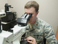 Air Force Major Michael McFall looks through a microscope