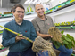 University of Nebraska�Lincoln professors Edgar Cahoon and James Alfano study root systems.
