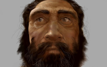 Artwork by Karen Carr depicting a facial reconstruction of a Neanderthal.