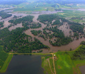 Flooded agricultural land and forest