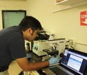 Vinayak Agarwal of the Scripps Institution of Oceanography looks at bacteria in marine sponges.