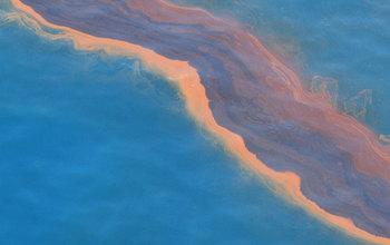 At the time of the Deepwater Horizon disaster, oil was streaked across parts of the Gulf of Mexico.