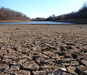 Drought in the U.S. West has dried waterways and parched farmlands.