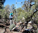 Researchers Darin Law and Juan Villegas investigate dying trees and local climate in New Mexico.