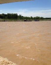 Yellow River waters during the water and sediment regulation season aimed at clearing sediment.