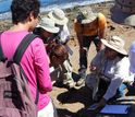 Citizen scientists with a researcher from the Trust's archaelogical project
