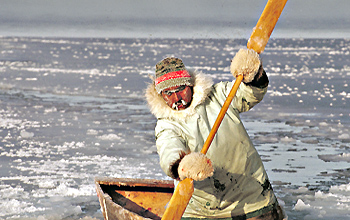 Hunting is among traditional Arctic wasy of life