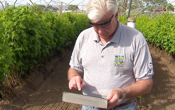 Berry Farmer John Eiskamp checks soil tension on his farm using his iPad.