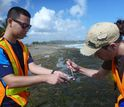 two citizen scientists collecting water samples
