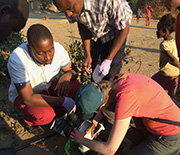 Citizen-scientists test concentrations of lead in soil in Kabwe, Zambia.