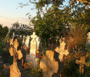 Overgrown cemetery overlooking the Danube River near Cernavoda, Romania. Life likely stirs here.