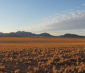 The Namib in the morning sun; fog usually occurs from late night to early morning.