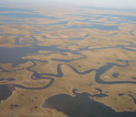 View of relatively healthy marsh area in southeastern Louisiana with tidal channels and canals.