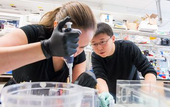 MIT graduate student Silvana Konermann and Feng Zhang in his lab