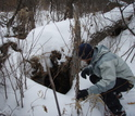 A winter ecologist peers beneath the subnivium and into the den of a porcupine living there.