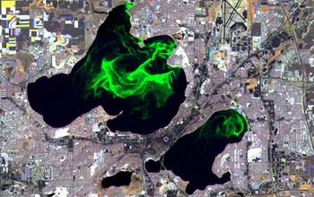 Aerial view showing algae blooms in Wisconsin's Lake Mendota