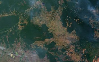 satellite image of fire and deforestation in western Brazil