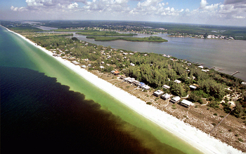 A red tide, or harmful algae bloom, is tainting Gulf of Mexico waters off Southwest Florida.