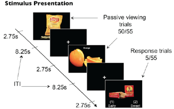 graphic showing food images and the text stimulus presentation, passive viewing