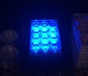 Blue light shines on cell cultures