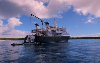The scientists conducted the Southern Line Islands study with the help of a research ship.