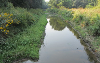 Low flow in a stream. Non-extreme rainfall is essential for maintaining ecosystem functions.