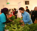 Students sell vegetables at farmers market