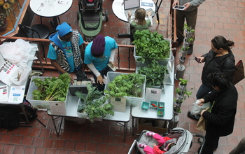 Students sell produce at farmers market