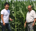 Scientists Dong Kook Woo (left) and Praveen Kumar study nutrients in corn productivity.