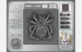 Test drive the iSEM simulator at http://www.nsf.gov/news/newsmedia/SEM/SEMviewer_NSF.swf