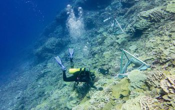 Scientists conduct research on coral reefs in the Southern Line Islands south of Hawai�i.