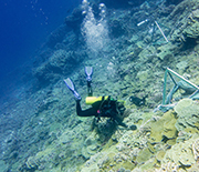 Scientists conduct research on coral reefs in the Southern Line Islands south of Hawai'i.