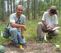 Scientists Julian Resasco (left) and Elizabeth Long at a fire ant site in a forest
