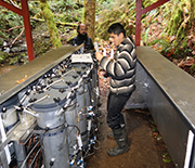 LTER scientists study organic matter in streambed sediments under controlled conditions.