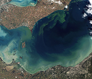 A 2011 freshwater harmful algae bloom turned Lake Erie a bright blue-green.