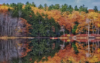 New England with fall trees in the background on a lake
