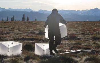 Field researcher in Alaska