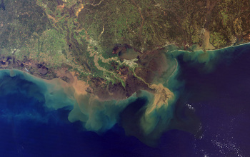 Aerial view of the Mississippi Delta.