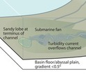 Examples of sediment transport