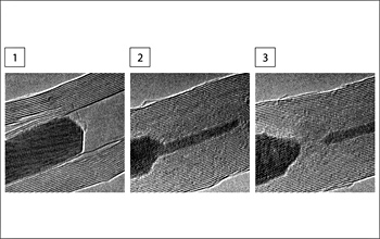 Electron micrographs reveal the atomic structure of the carbon nanotube and its filler material.
