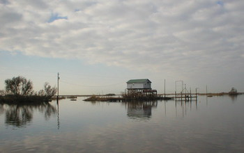 A fishing camp along Falgout Canal Bayou, Louisiana, where marsh has been flooded by seawater.