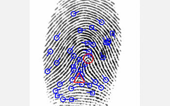 Multimedia Gallery - Fingerprint analysis | NSF - National