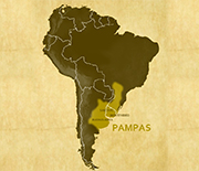 Map showing the Pampas, site of RELAMPAGO-CACTI.