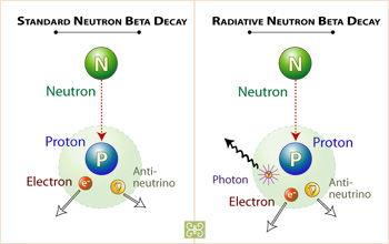 Rarely, a decaying neutron will produce photons of light (right panel).
