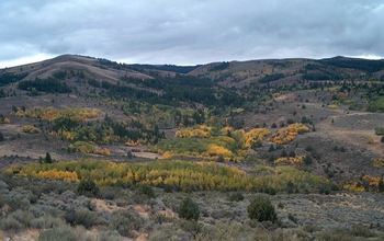 Autumn at the Reynolds Creek CZO in Southwest Idaho; carbon in soil is a research focus.