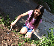 Girl taking soil samples from Indianapolis neighborhoods with potential contaminants.